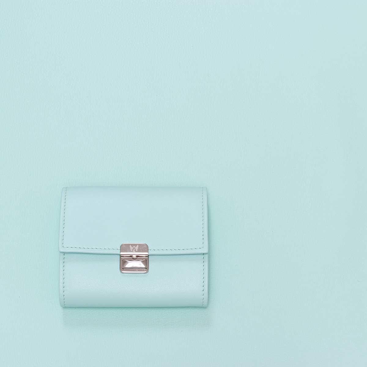 Kleines Leder Portemonnaie MintS